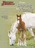 """Buch """"From Breeding to Weaning"""""""