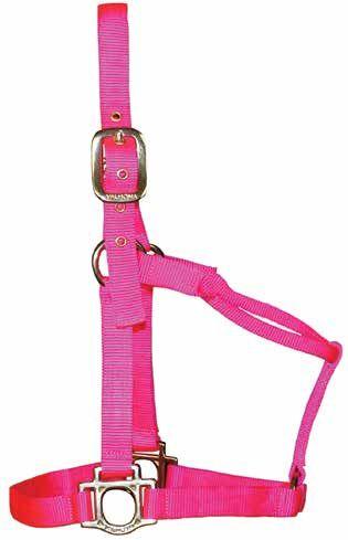 Halfter Hot Pink B