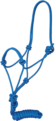 Traditional Poly Rope Halter with Lead